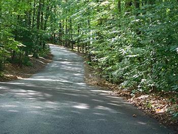 Rollins Pond Roadway