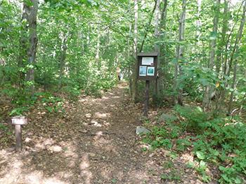 Woodford Foot Trail